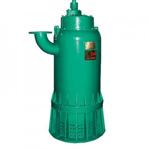 Special Design for Submersible Sewage Pump -